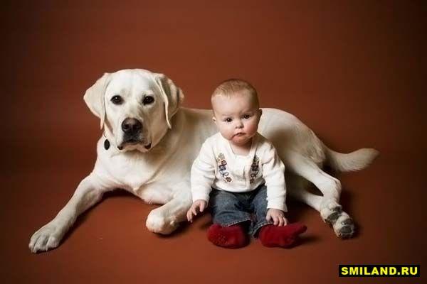 Дети и их собачьи друзья